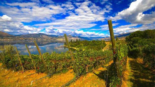 kettle valley winery naramata bench